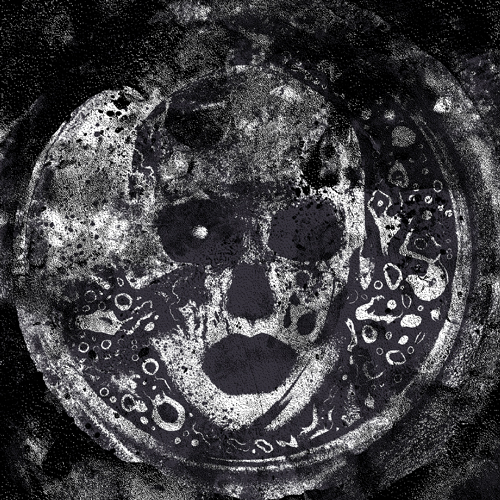 skull web